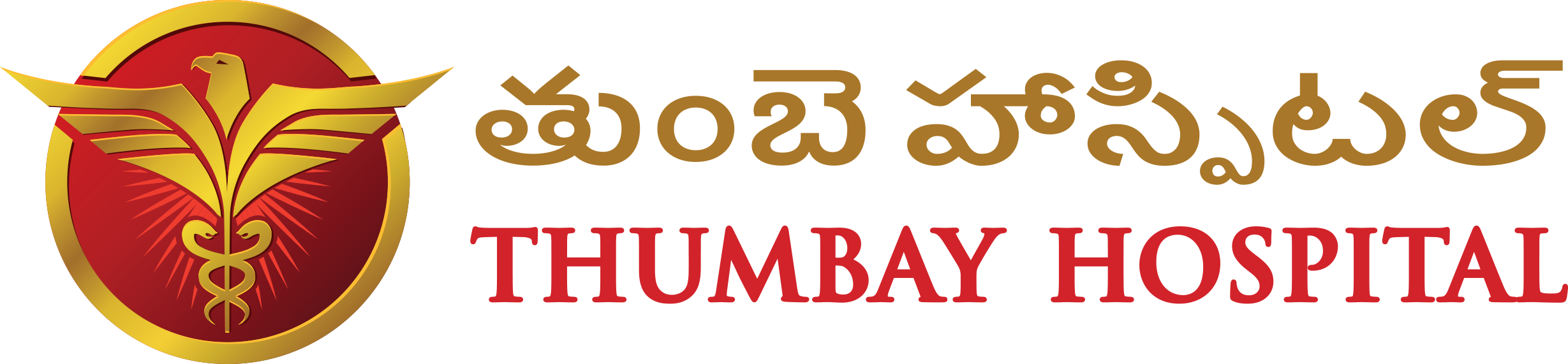Thumbay Hospital New Life, Hyderabad